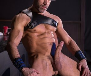 Raging Stallion Manuel Skye slams Mick Stallone